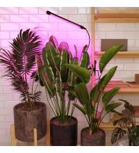 FT-004 / Светильник для растений Чёрный