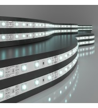 2835 12V 60Led 4,8W IP20 / Лента светодиодная 60Led 4,8W IP20 6500K холодный белый