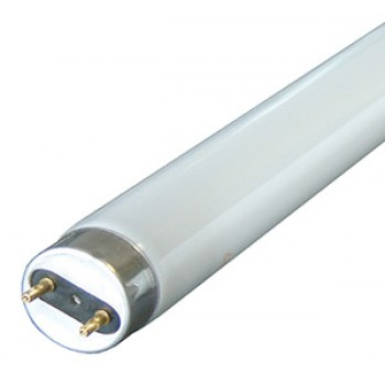 Лампа в ловушки для насекомых WELL FL10BL T8 G13